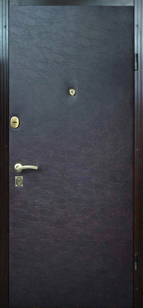 железные двери с кожей